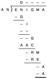 Enigma 102